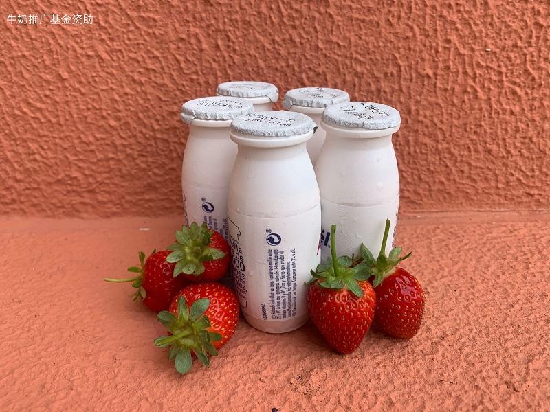 发酵乳饮料在中国的流行