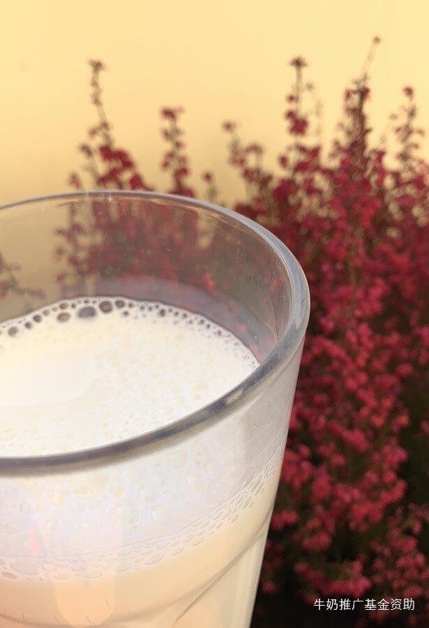 牛奶的营养价值有哪些?