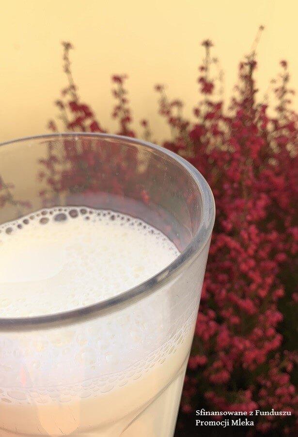 Jakie wartości odżywcze posiada mleko?