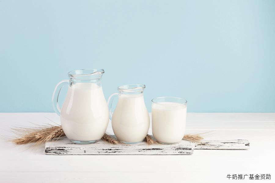波兰乳制品对华出口量持续增长