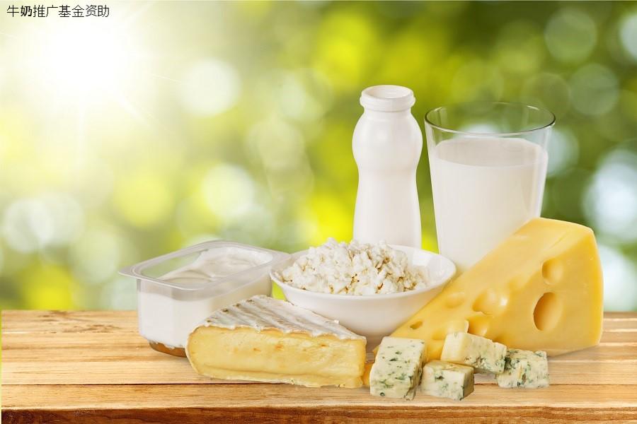 波兰牛奶和乳制品对华出口取得好成绩